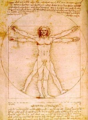 Curso Online De Anatomía, Fisiología Y Patología (Parte I ...